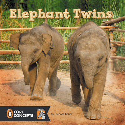 elephant twins cover