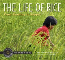 RICEbookCover2011